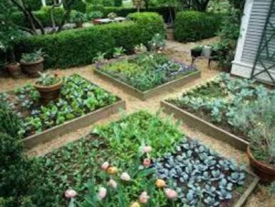 Garden Exchange